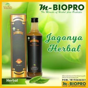 Jual Herbal  M BIOPRO  di Tideng Pale Hubungi WA 0822-2395-9019